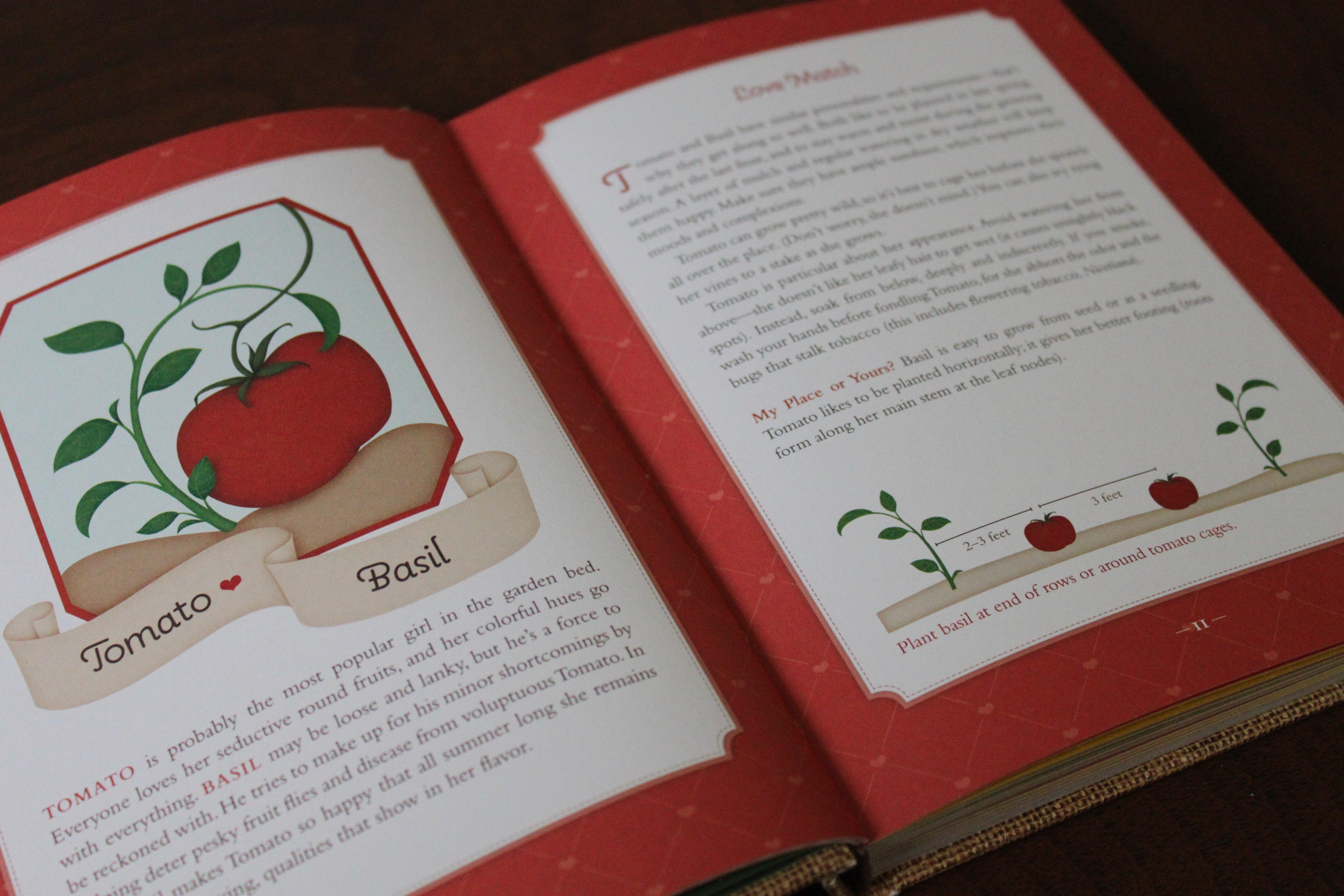 Soil Mates - Companion Planting for Your Vegetable Garden ©Sabor de Fazenda