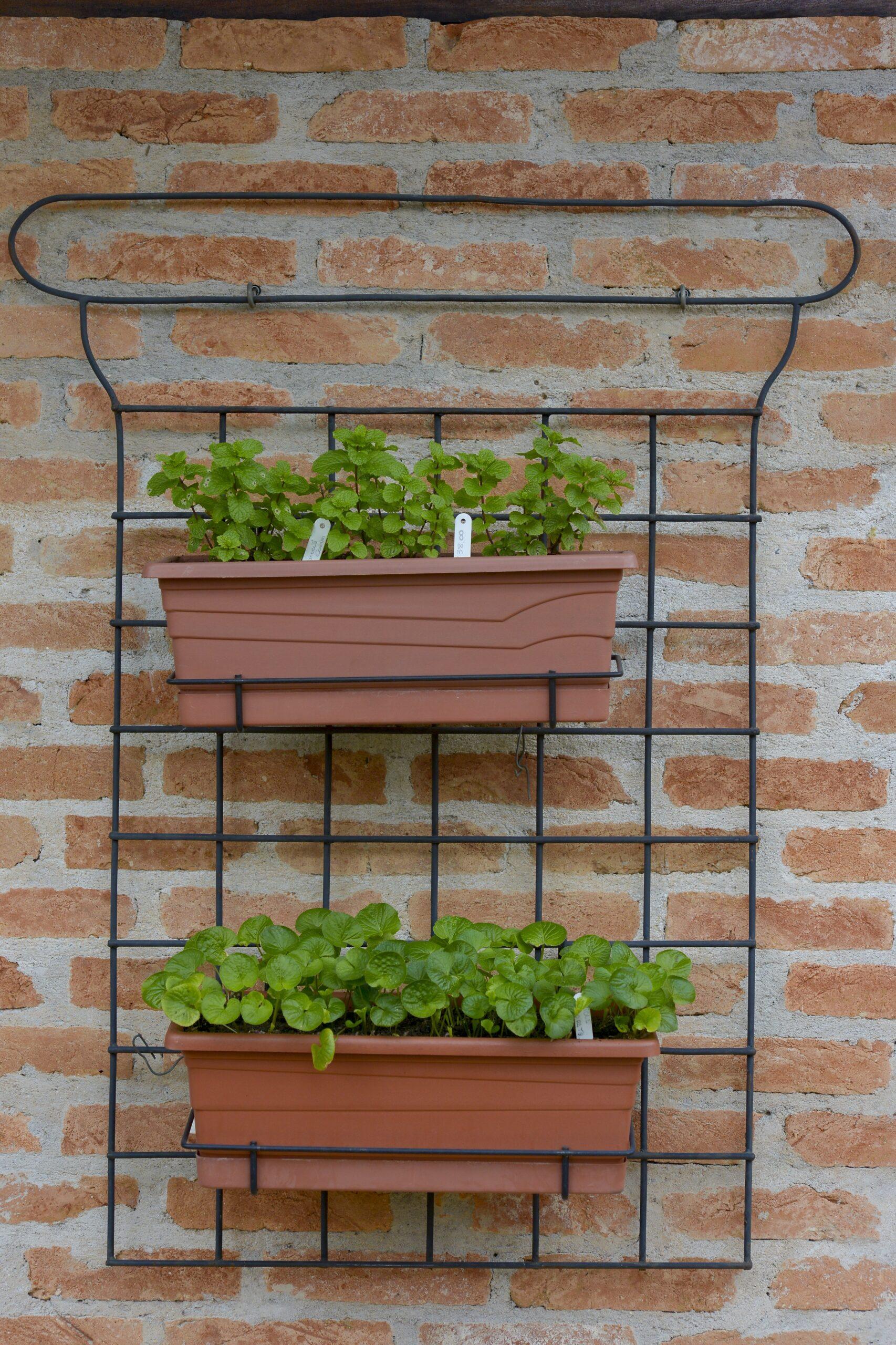 Pequenos Espaços: Hortas Verticais na Parede