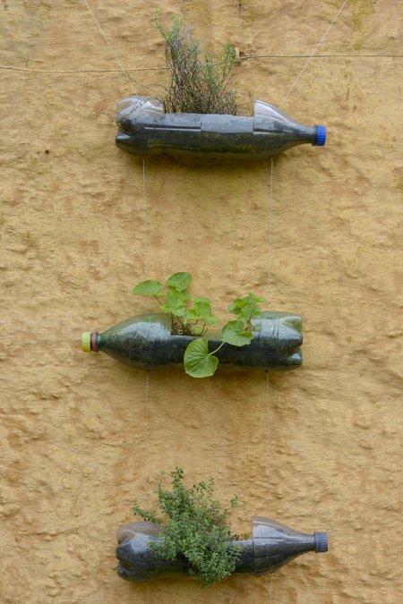 Horta em garrafas PET ©Zé Gabriel
