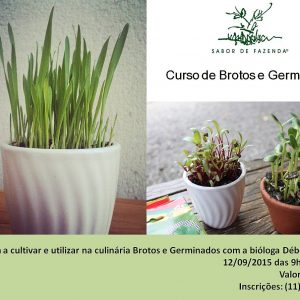 Cultivando Brotos e Germinados