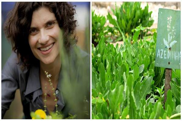 jardinagem_panc