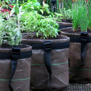 Como deixar a horta bonita e aromática?