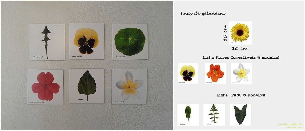 7Coleções_do_Jardim (36)