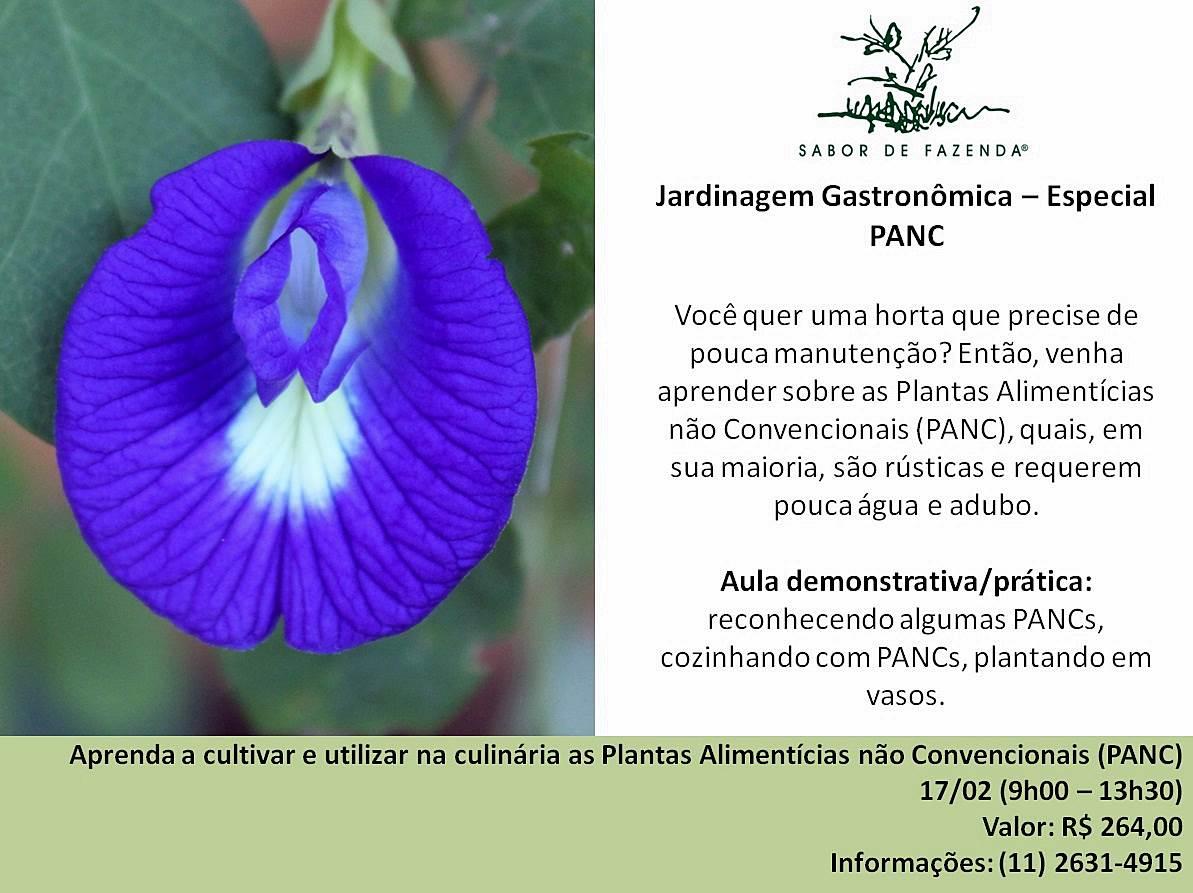 Curso Jardinagem Gastronômica – Especial PANC