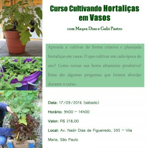 Cultivando Hortaliças em Vasos