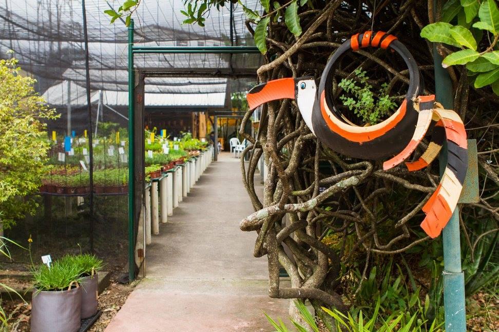 Sustentabilidade na Sabor de Fazenda